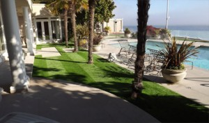 Our Low-Maintenance Fake Grass Will Outlast a Real Lawn