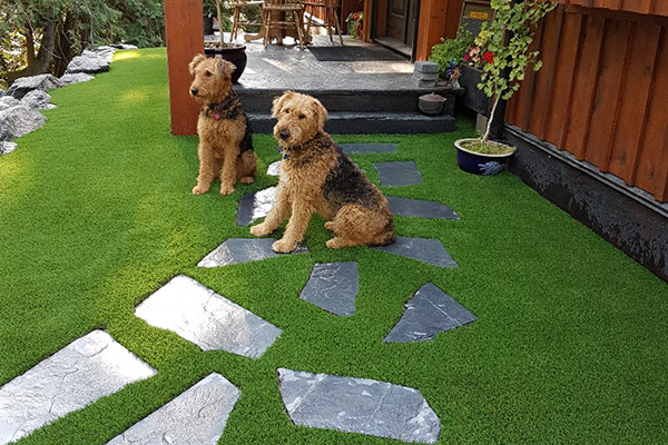 Artificial Grass Installation with Integrity